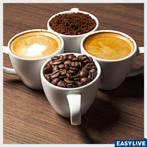 Curso Barista - Aprendendo tudo sobre café